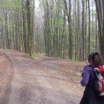 Landschaft als Orakel! Mythologisch Wandern. Wie geht das? 2. Teil