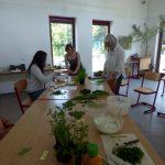 Der Schulbiologiegarten in Hannover und die Frankfurter Soße
