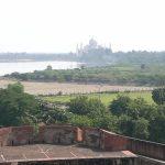 Abschied von Indien:  Fort Agra und die Rückreise nach Dehli mit anschließendem Heimflug
