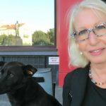 Aus meinem E-Mail Postfach: Eine Hunde-Geschichte
